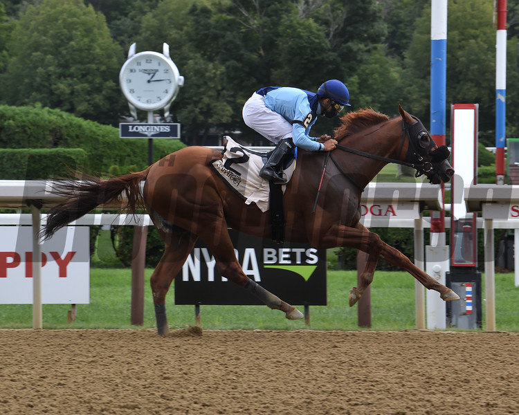 Captain Bombastic wins the 2020 New York Stallion Stakes (Times Square div)<br /> Coglianese Photos