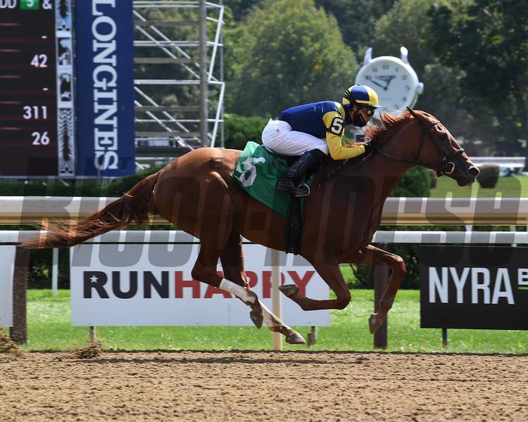 Malibu Curl wins maiden special weight Sunday, September 6, 2020 at Saratoga Race Course. Photo: Coglianese Photos