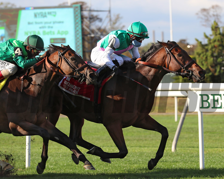 Viadera wins the 2020 Noble Damsel Stakes at Belmont Park<br /> Coglianese Photos/Janet Garaguso