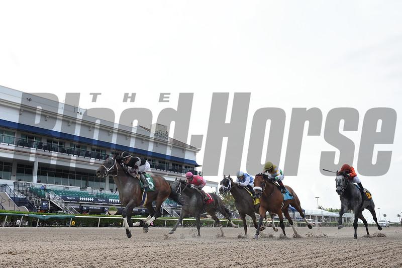 Global Campaign wins an allowance optional claiming race Saturday, April 25, 2020 at Gulfstream Park. Photo: Coglianese Photos/Ryan Thompson