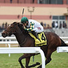 Feel Glorious wins the 2020 Forever Together Stakes at Aqueduct<br /> Coglianese Photos/Chelsea Durand