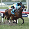 Shared Legacy - Maiden Win, Gulfstream Park, April 10, 2020<br /> Coglianese Photos/Ryan Thompson