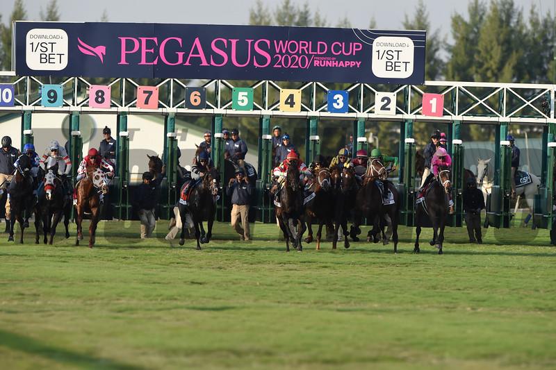 Zulu Alpha wins 2020 Pegasus World Cup Turf Invitational at Gulsftream Park. Photo: Coglianese Photos/Tim Sullivan