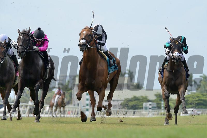 Pay Any Price wins the Bob Umphrey Turf Sprint Stakes Sunday, July 5, 2020 at Gulfstream Park. Photo: Coglianese Photos/Ryan Thompson