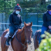 Horses leave the main track at Belmont Park Wednesday, May 20, 2020 in Elmont, N.Y. with the exercise riders using a face masks in compliance with the safety protocols at the New York tracks. Photo by Skip Dickstein