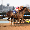 Max Player wins the 2020 Withers Stakes at Aqueduct<br /> Coglianese Photos/Susie Raisher