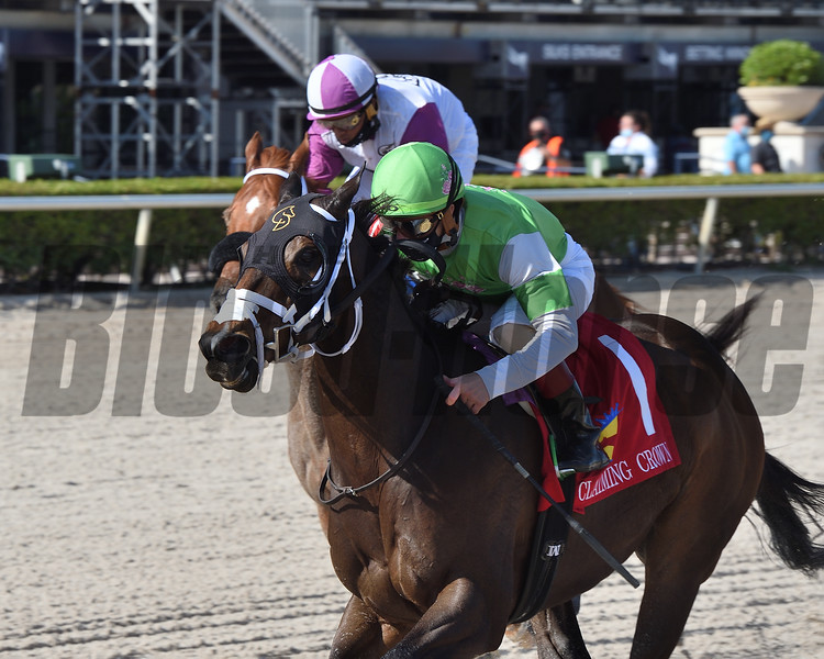 Krsto Skye wins the 2020 Claiming Crown Express Stakes at Gulfstream Park  <br /> Coglianese Photos/Derbe Glass