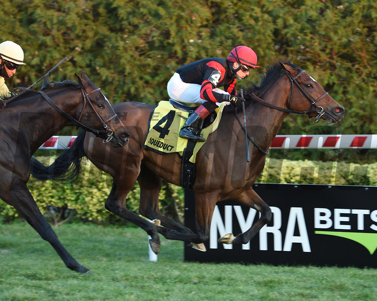 Mutamakina wins the 2020 Long Island Stakes at Aqueduct<br /> Coglianese Photos