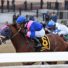 Arthur's Hope wins the 2020 Say Florida Sandy Stakes at Aqueduct<br /> Coglianese Photos/Joe Labozzetta