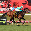 Fire At Will wins the 2020 Pilgrim Stakes at Belmont Park<br /> Coglianese Photos/Janet Garaguso