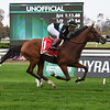 Tamahere wins the 2020 Sands Point Stakes at Belmont Park<br /> Coglianese Photos/Susie Raisher