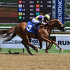 Irish Constitution - Maiden Win, Saratoga, July 24, 2020<br /> Coglianese Photos