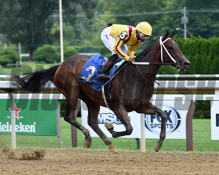 Cantata wins maiden special weight Sunday, August 16, 2020 at Saratoga. Photo: Coglianese Photos