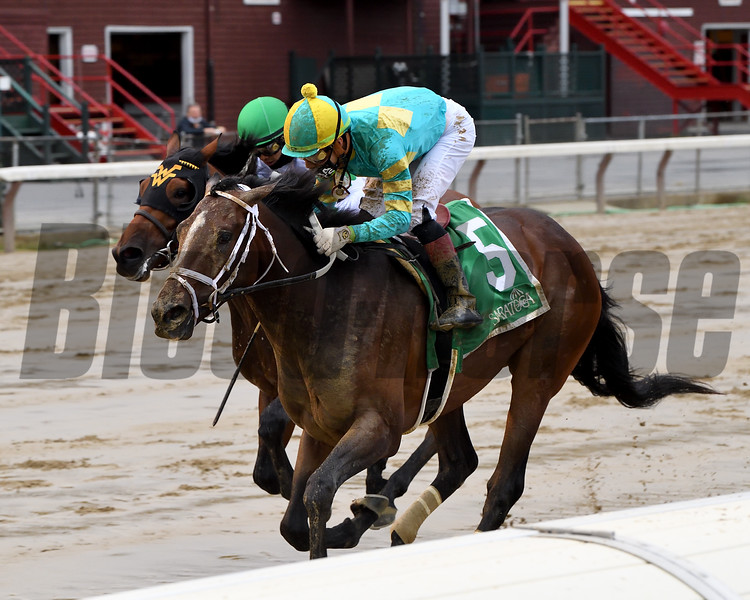 Fire At Will wins the 2020 With Anticipation Stakes at Saratoga<br /> Coglianese Photos/Chelsea Durand