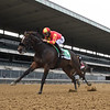 Dayoutoftheoffice wins the 2020 Frizette Stakes at Belmont Park<br /> Coglianese Photos