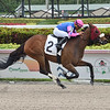 Royal Meghan - Maiden Win, Gulfstream Park, March 6, 2020<br /> Coglianese Photos/Lauren King