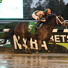 Dollar Mountain - Maiden Win, Belmont Park, October 16, 2020<br /> Coglianese Photos