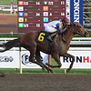 My Sweet Wife - Maiden Win, Saratoga, September 3, 2020<br /> Coglianese Photos