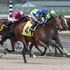 Saratoga Affair - Maiden Win Gulfstream Park, April 12, 2020<br /> Coglianese Photos/Ryan Thompson