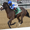 Kept True wins the 2020 Broadway Stakes at Aqueduct<br /> Coglianese Photos/Joe Labozzetta