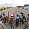 Tiz the Law wins the 2020 Florida Derby at Gulfstream Park. Photo: Coglianese Photos/Ryan Thompson