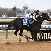 Independence Hall wins the 2020 Jerome at Aqueduct<br /> Coglianese Photos/Susie Raisher
