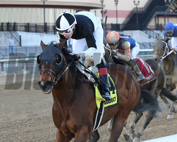 Amundson wins the 2020 Hollie Hughes Stakes at Aqueduct Racetrack. Photo: Coglianese Photos/Chelsea Durand