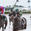 Poppy's Pride wins the 2020 Armed Forces Stakes at Gulfstream Park<br /> Coglianese Photos/Ryan Thompson