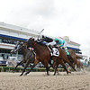 Lady's Island wins the 2020 Sugar Swirl Stakes at Gulfstream Park<br /> Coglianese Photos/Ryan Thompson