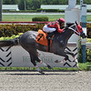 Kicks On Sixty Six - Maiden Win, Gulfstream Park, August 28, 2020<br /> Coglianese Photos/Lauren King