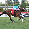 Hot Blooded wins the 2020 Proud Man Stakes at Gulfstream Park <br /> Coglianese Photos/Lauren King