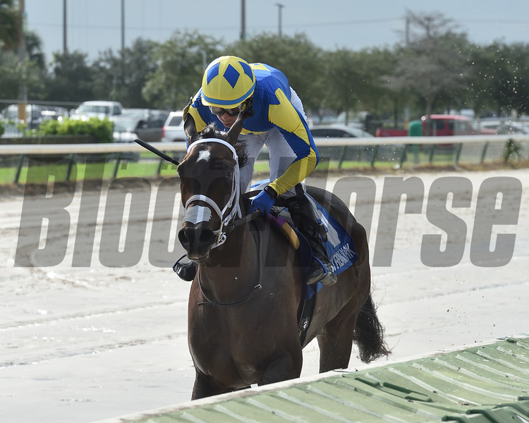 Shea D Summer wins the 2020 Juvenile Fillies Sprint Stakes at Gulfstream Park West<br /> Coglianese Photos/Ryan Thompson