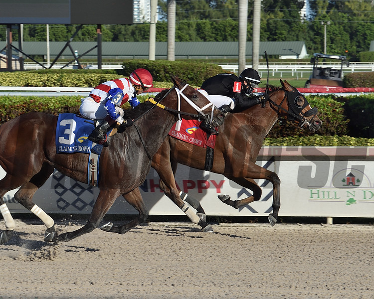 Avant Garde wins the 2020 Claiming Crown Rapid Transit Stakes	<br /> Coglianese Photos/Lauren King
