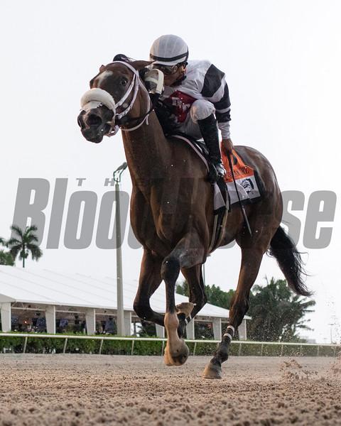 Princess Secret wins the 2020 FTBOA Florida Sire My Dear Girl Stakes<br /> Coglianese Photos/Ryan Thompson