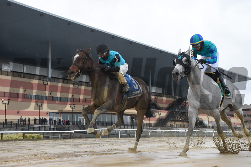 Brooklyn Strong wins the 2020 Remsen Stakes at Aqueduct     <br /> Coglianese Photos