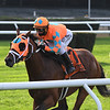 Somelikeithotbrown wins the 2020 Mohawk Stakes at Belmont Park<br /> Coglianese Photos/Chelsea Durand