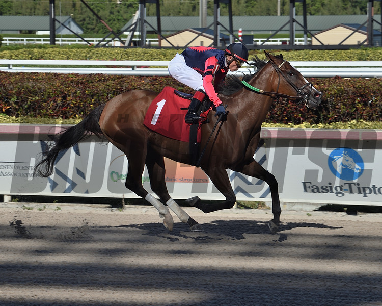 Remarkable Soul wins a maiden special weight Sunday, March 29, 2020 at Gulfstream Park. Photo: Coglianese Photos/Lauren King