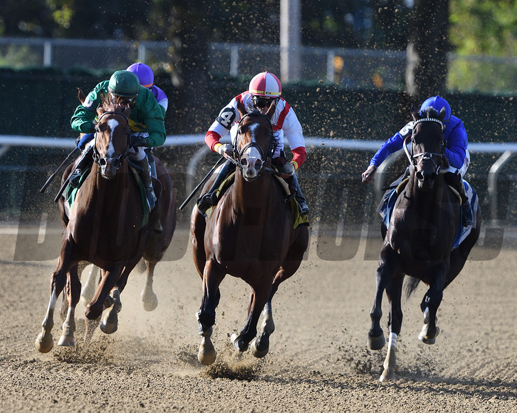 Complexity wins the 2020 Kelso Stakes at Belmont Park<br /> Coglianese Photos/Dom Napolitano
