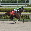 Krsto Skye wins the 2020 Claiming Crown Express Stakes at Gulfstream Park  <br /> Coglianese Photos/Lauren King