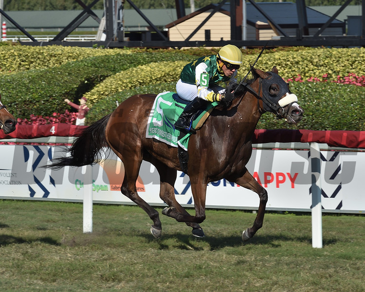 Cheermeister wins the 2020 Herecomesthebride Stakes at Gulfstream Park    <br /> Coglianese Photos/Lauren King
