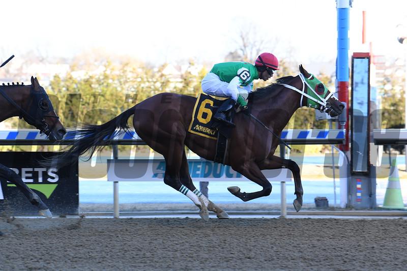Diamond King wins the 2020 Stymie Stakes at Aqueduct.<br /> Coglianese Photos/Susie Raisher