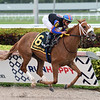 Tonalist's Shape wins the 2020 Forward Gal Stakes at Gulfstream Park<br /> Coglianese Photos/Lauren King
