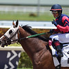 Superfecto - Maiden Win, Gulfstream Park, May 2, 2020<br /> Coglianese Photos/Ryan Thompson