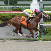 Well Connected - Maiden Win, Gulfstream Park, May 23, 2020<br /> Coglianese Photos/Lauren King