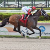 Setting the Mood - Maiden Win, Gulfstream Park, May 21, 2020<br /> Coglianese Photos/Lauren King
