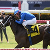 Fujairah - AOC, Gulfstream Park, June 19, 2020<br /> Coglianese Photos/Ryan Thompson