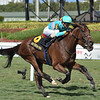 La Signare wins the 2020 Sand Springs Stakes at Gulfstream Park<br /> Coglianese Photos/Ryan Thompson