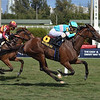 La Signare wins the 2020 Sand Springs Stakes at Gulfstream Park<br /> Coglianese Photos/Lauren King