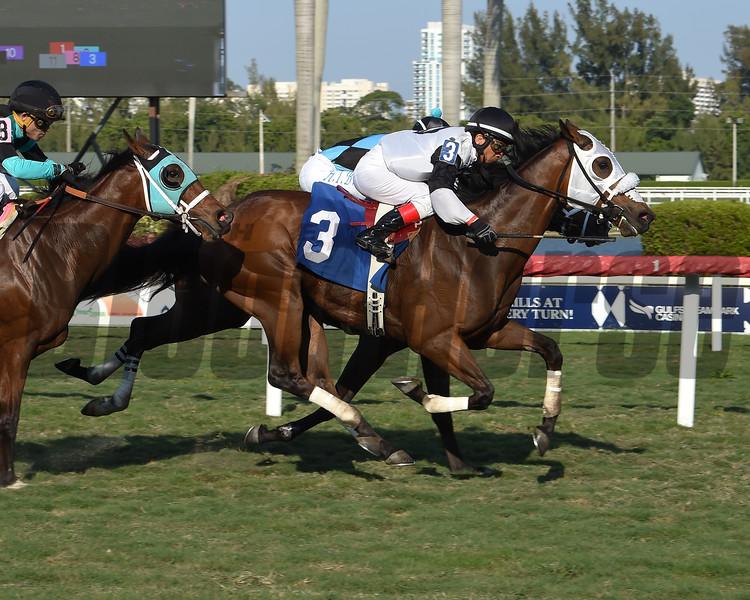 Belgrano - Claiming Win, Gulfstream Park, March 26, 2020<br /> Edgar Prado          <br /> Coglianese Photos/Lauren King