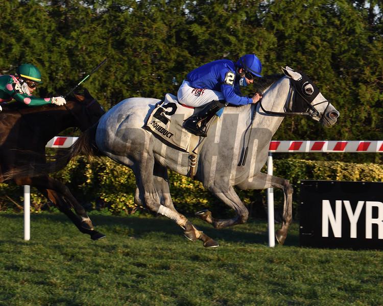 Lovestruck wins the Tepin Stakes Sunday, November 29, 2020 at Aqueduct. Photo: Coglianese Photos/Susie Raisher